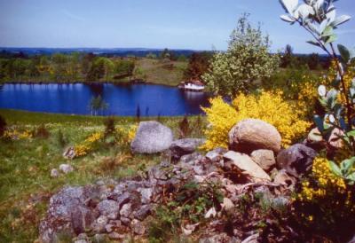 Etangs des Rivières Pourpres