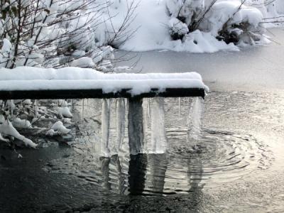 L'hiver aux Rouillons