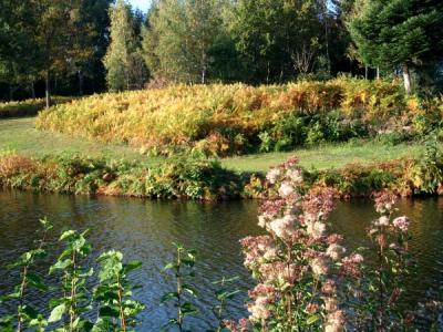 Randonnée aux 1000 étangs
